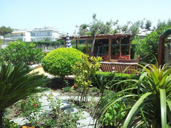 Hotel Villa Sirena: Il giardino della piscina
