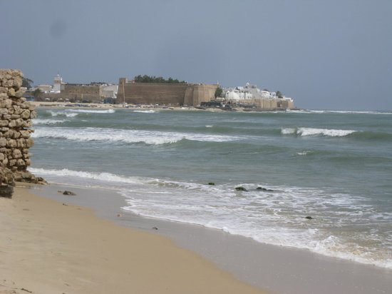 The Sindbad: Walk to Hammamet