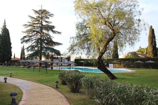 Ayre Hotel Cordoba: ホテル庭&プール