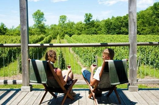 Prince Edward County, Canada : Take in some wine in one of the many local vineyards!
