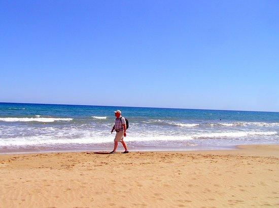 Pilot Beach Resort: Lovely beach