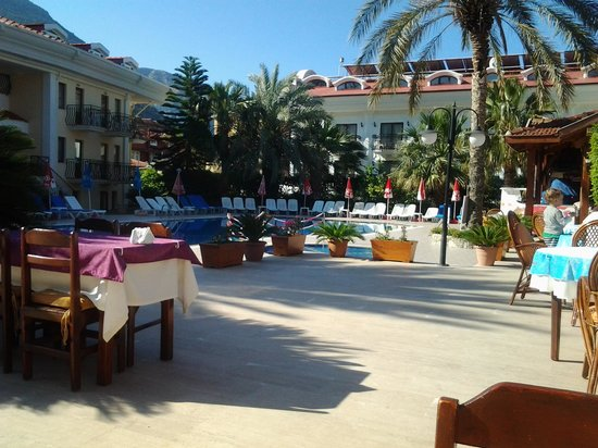 Blue Star Hotel: by the pool