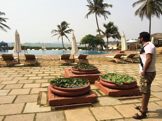 Taj Fort Aguada Resort & Spa, Goa: Go Jump in the pool