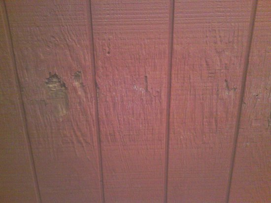 Villa Roma Resort and Conference Center: Rotting wall in mens sauna