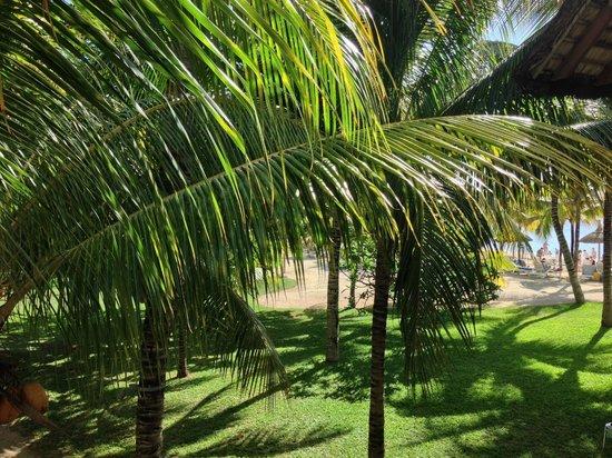Canonnier Beachcomber Golf Resort & Spa : vista del giardino dalla stanza