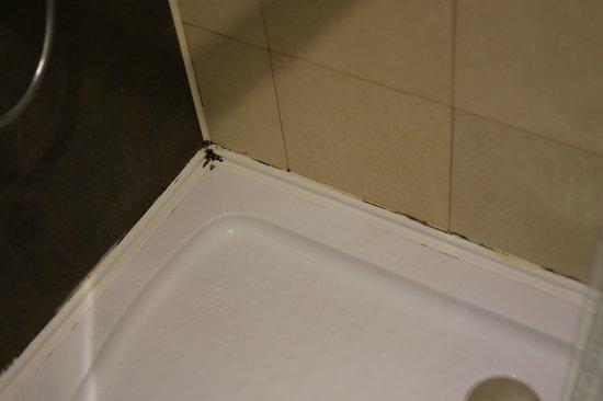 ซี เอ็กเซ็คคิวทีฟ บูทิค โฮเต็ล: dirty bathroom