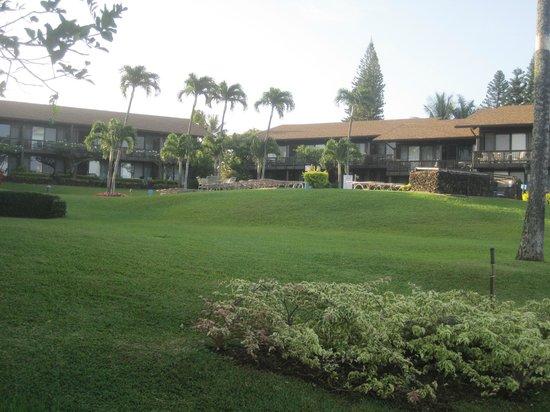 Mahina Surf : grounds