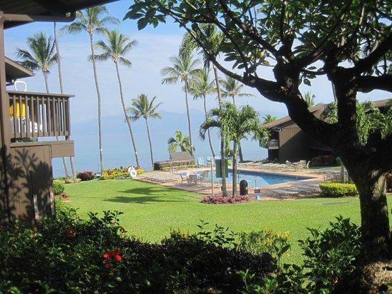 Mahina Surf: grounds