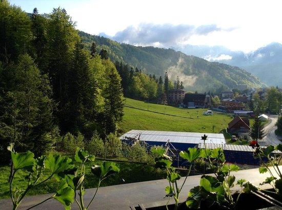 Lux Garden Hotel : Вид из номера