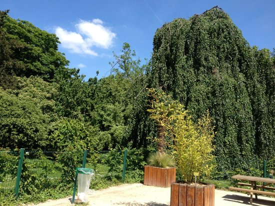 Jardin des Plantes : this is a great spot for a picnic