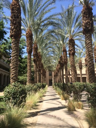 Hyatt Regency Indian Wells Resort & Spa: Hotel grounds