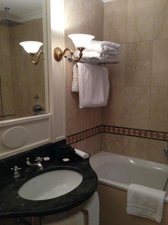 Sofitel Rome Villa Borghese: intricate bathroom