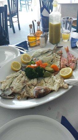 Sunset Ammoudi Taverna: GRILL FISH MIX