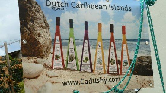 The Cadushy Distillery: The Cactus Range of liqueurs