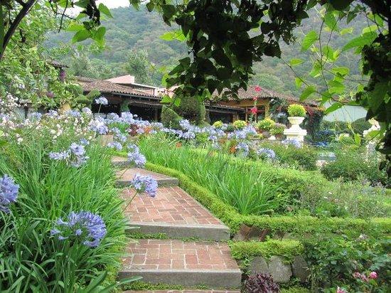 Hotel Atitlan : gardens 2
