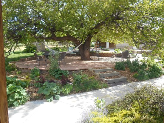 Canyons Bed and Breakfast : Attractive patio & grounds