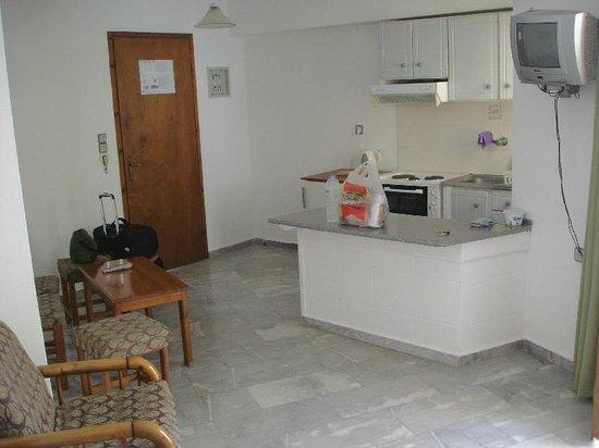 Artemis Hotel & Apartments: Kitchen