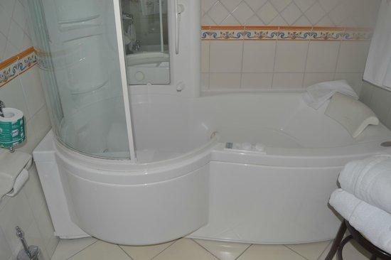 Hotel Eden Roc : Shower/ bathtub