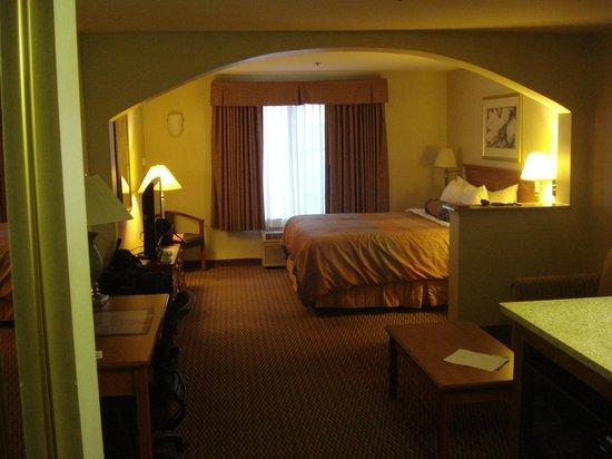 BEST WESTERN PLUS Airport Inn & Suites: Our suite