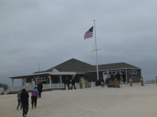 Gray Line New York Sightseeing: La playa en Los Hamptons