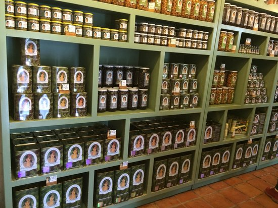 Kucukkuyu, Turkey: Olive oil