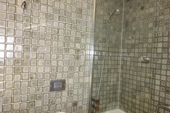 Central Plaza Hotel: shower