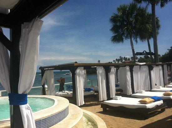 Cofresi Palm Beach & Spa Resort: VIP Beach at the Tropical