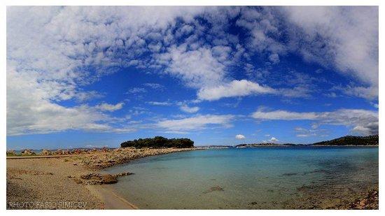 Podvrske Beach