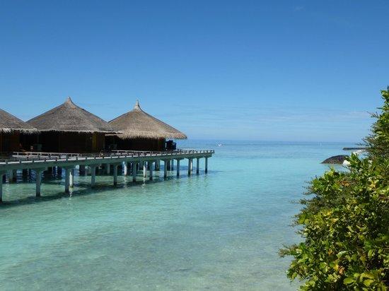 Kuramathi Island Resort: Water villas