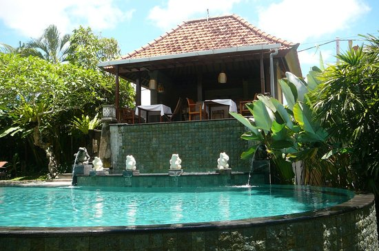 Villa Sonia: beautiful pool