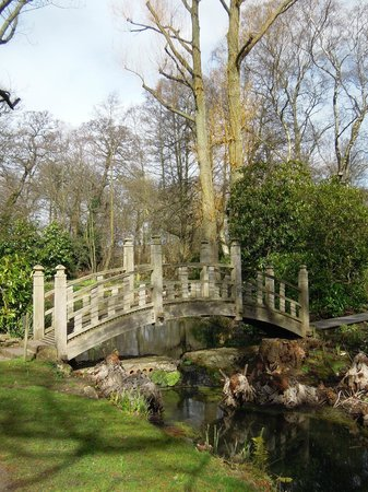 Winterbourne House and Garden: Garten