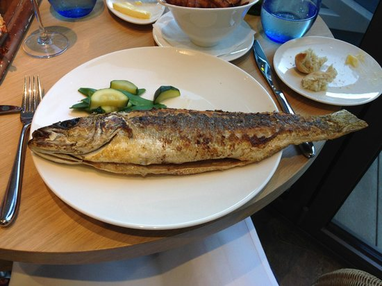 Salcombe Harbour Hotel & Spa : One very large sea bass