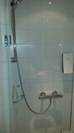 Scandic Maritim: shower