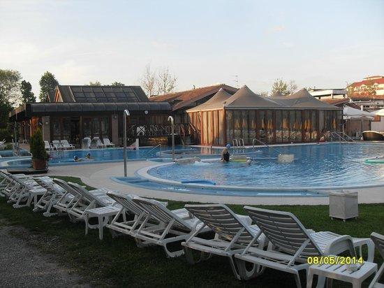 Piscina picture of hotel terme preistoriche montegrotto terme tripadvisor - Terme preistoriche montegrotto prezzi piscina ...
