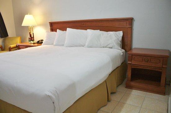 Tulip Motel : the room i had