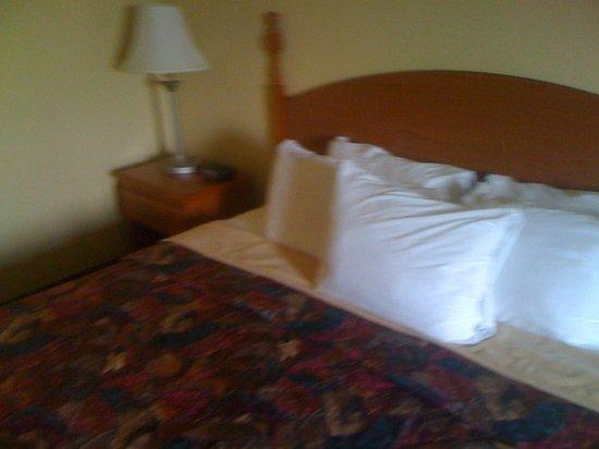 Days Inn Houma LA: Bed