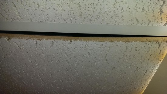 The Shawnee Inn and Golf Resort: God knows what was coming out of this ceiling tiles not seated correctly.