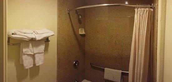 Monterey Oceanside Inn: Bathroom. Sperate sink outside.