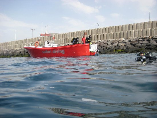 Safari Diving Lanzarote: Boat dive at harbour wall