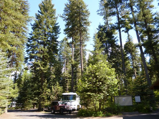 Meacham, OR: Beautiful campsite but too close to highway