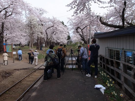 Tsugaru Railways: カメラ小僧がずっとへばりついてます。