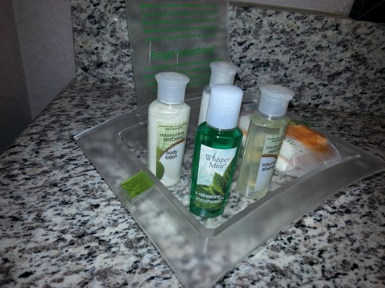 Holiday Inn Houston West Energy Corridor: amenities