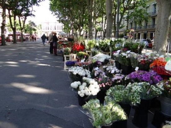 Hôtel Impérator : flower market in front of the hotel