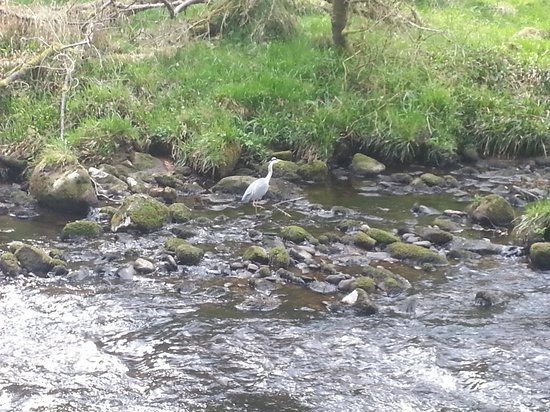 Hardcastle Crags: down by the river