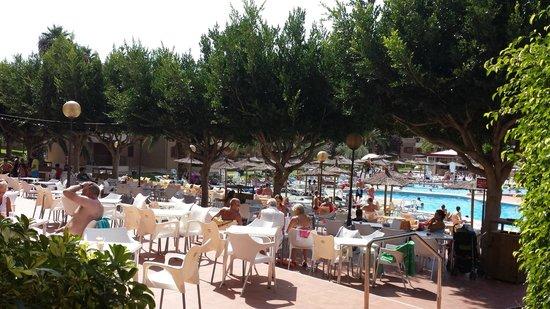 Albir Garden Resort: hotel