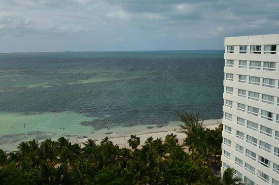Grand Oasis Palm : Playa
