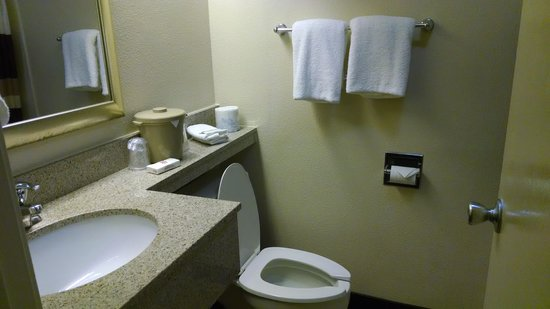 Red Roof Inn Harrisburg North: Bathroom - sink area