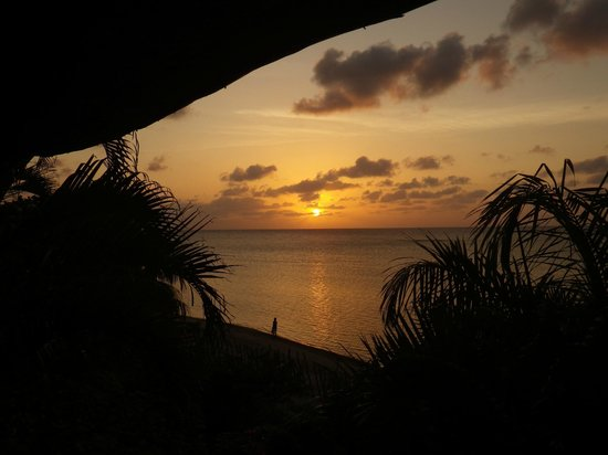 Tranquilseas Eco Lodge and Dive Center : Gorgeous Sunset from our Verandah