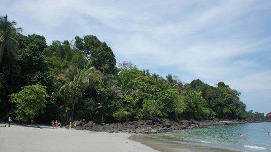 Playa Manuel Antonio : nice