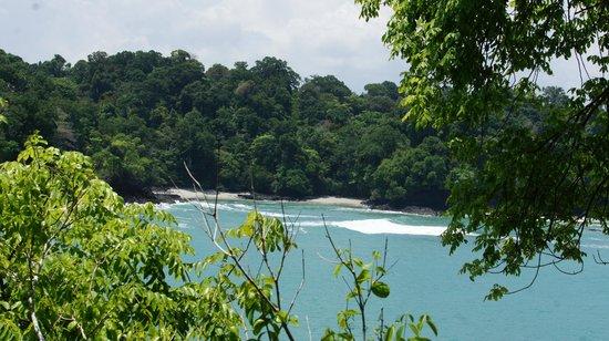 Playa Manuel Antonio: nice